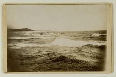 Kosakovskių šeimos archyvas. 7 : Ikonografija. - 1790-[1919]. 1769 : [Baltijos jūros ties Palanga, gyvenamojo namo, gamtos vaizdų nuotraukos] / fotogr. Paulina Mongirdaitė ir kt. - 18--