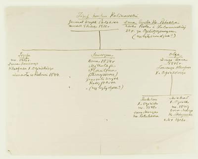 Kosakovskių šeimos archyvas. 9 : Archivalia. - 1698-1919. 1941 : [Juozapo Kalinovskio ir Oginskių šeimos geneologinė schema]. - 18--