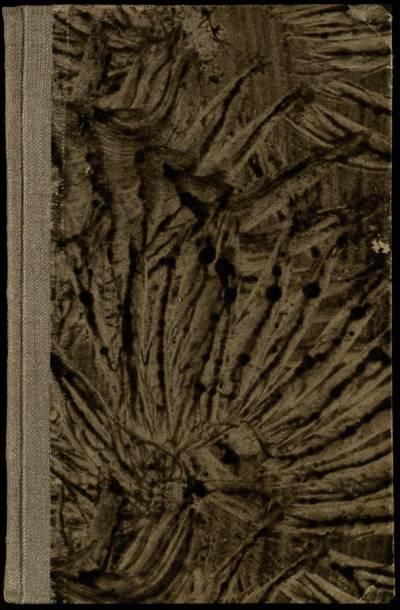 Šventoji Senojo įstatymo istorija / parašė Kazimieras Paltarokas, T. M. - 1932
