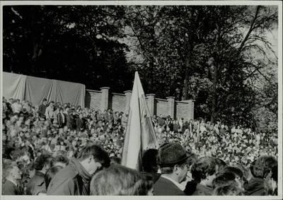 Stasio Adomavičiaus fotografija. Sąjūdis Plungėje 1988-1989. [Plungiškių minia, stebinti Sąjūdžio mitingą Plungės miesto Babrungo slėnyje, 1989 m. rugpjūčio mėn. / Stasys Adomavičius]. - 1989