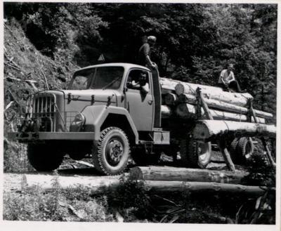 Tovornjak za spravilo lesa
