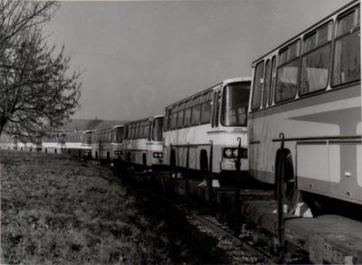TAM-ovi avtobusi