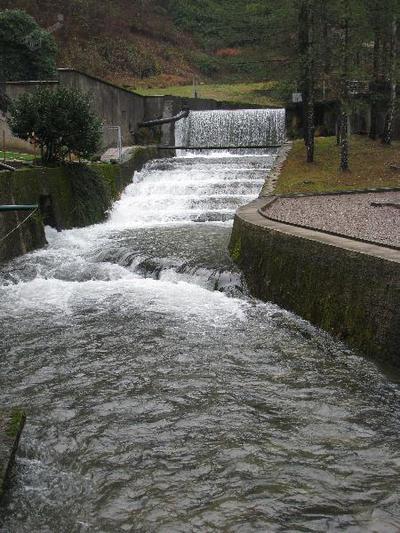 Potok Bistrica