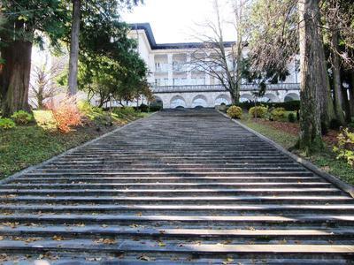 Stopnice do Vile Bled