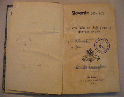 Slovenska slovnica, 1876