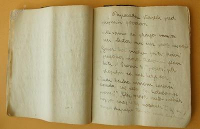 Šolski zvezek, slovenščina, Turnšek, I. OŠ Celje, 1936/1937, 48