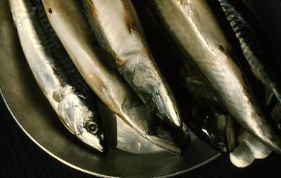 Ribe na pladnju 2