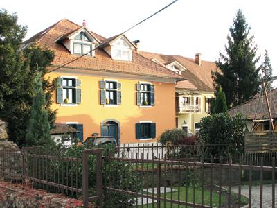 Nekdanja Molinejeva vila v Kamniku