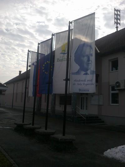 Zastava Toporišičevega leta - Krajevna skupnost Dobova