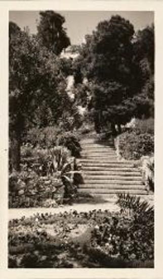 American School of Classical Studies at Athens. Garden