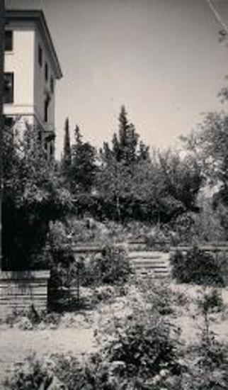 American School of Classical Studies at Athens