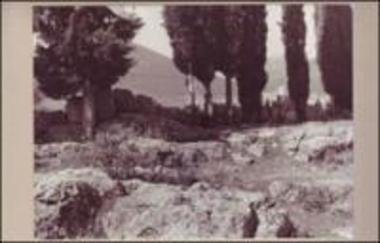 Τείχος αρχαίας Μυωνίας