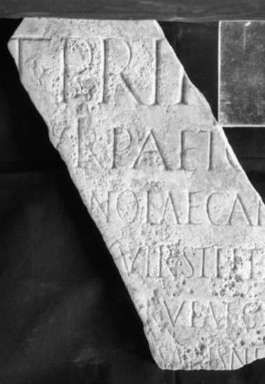 Achaïe II 035: Τιμητική για τον Τίτο Πριφέρνιο Παῖτο Ρωσιανό Γέμινο Λαικάνιο, ανθύπατο Αχαΐας