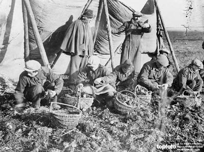 Italian peasants work in German