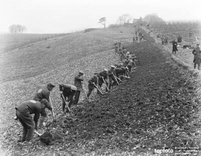 German prisoners at work at